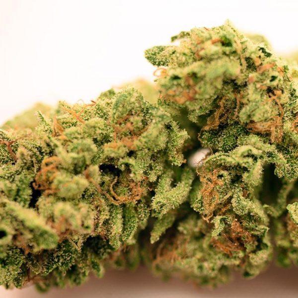 Banana Kush Cannabis Strain Sugarleaf